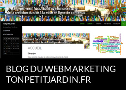 Blog du webmarketing